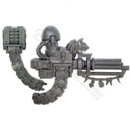 Canon d'Assaut T SW